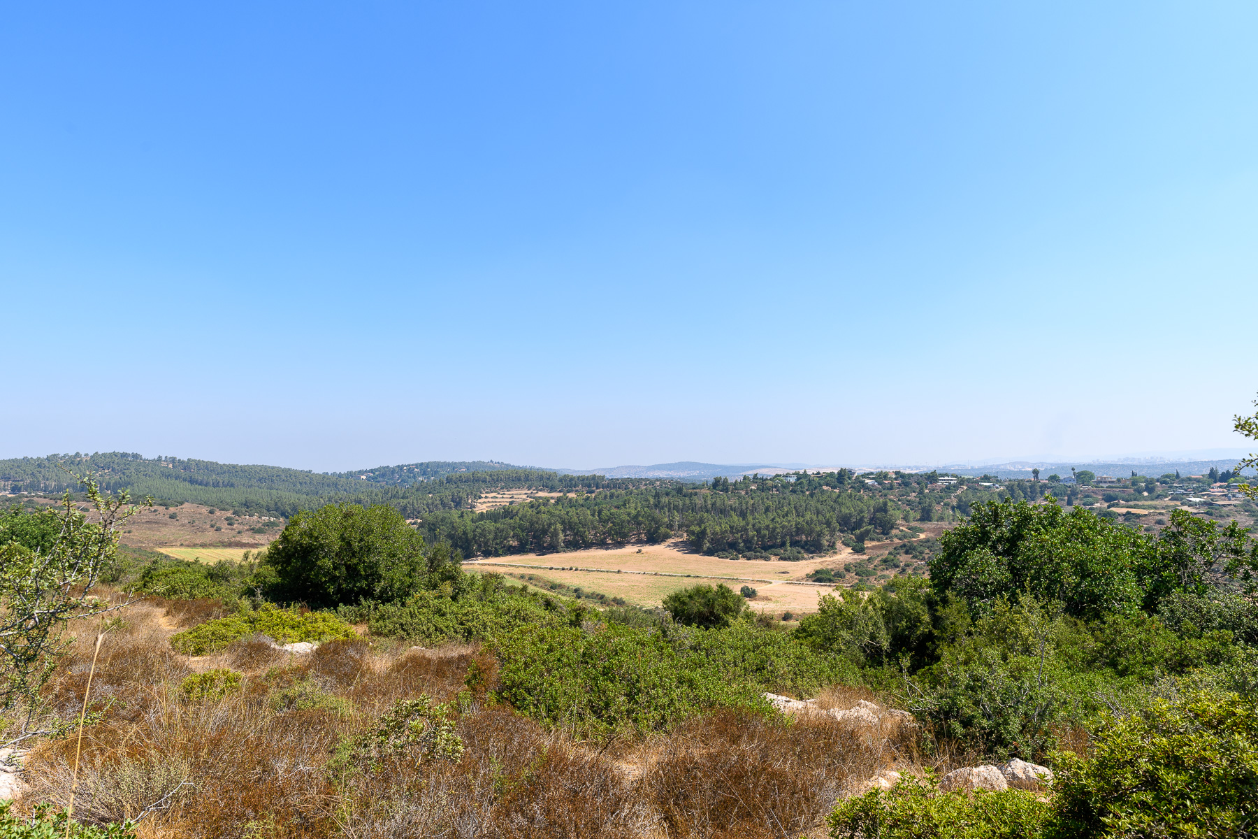 Khirbet Midras - view of the Adullam Grove National Park