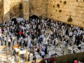 Praying at the Kotel (Western Wall)